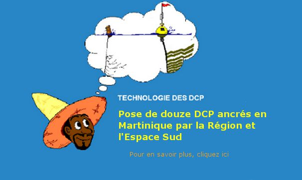 Pose DCP Martinique